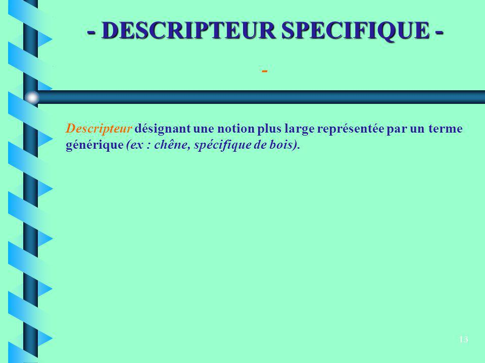 - DESCRIPTEUR SPECIFIQUE -