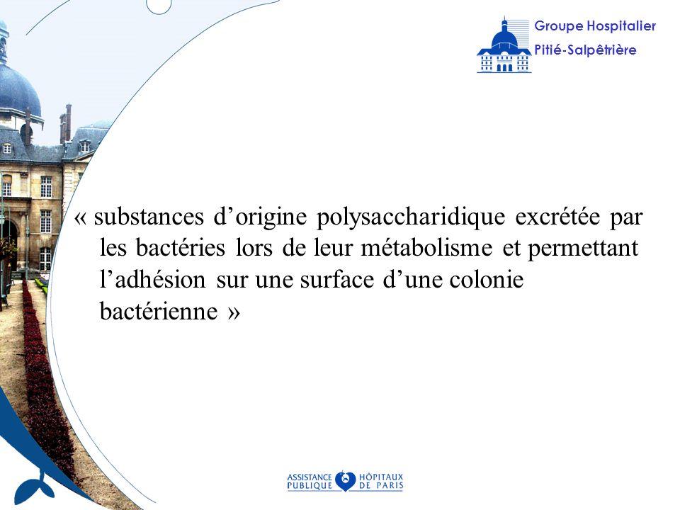 « substances d'origine polysaccharidique excrétée par les bactéries lors de leur métabolisme et permettant l'adhésion sur une surface d'une colonie bactérienne »