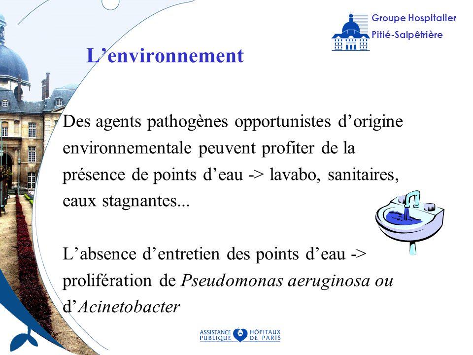 L'environnement Des agents pathogènes opportunistes d'origine