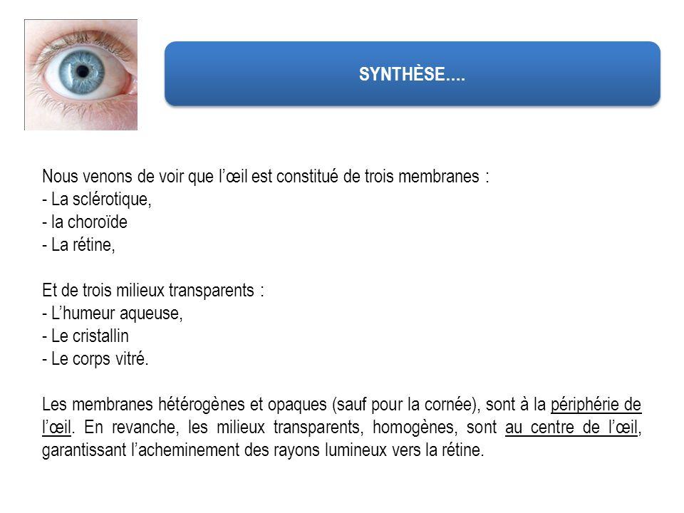 SYNTHÈSE…. Nous venons de voir que l'œil est constitué de trois membranes : La sclérotique, la choroïde.