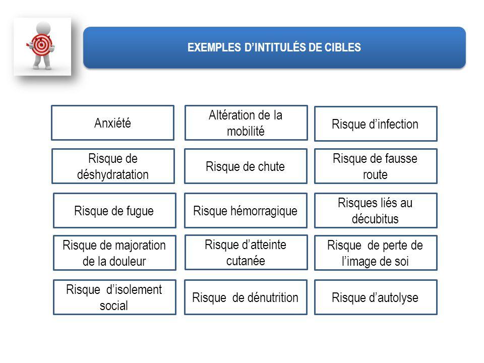 EXEMPLES D'INTITULÉS DE CIBLES