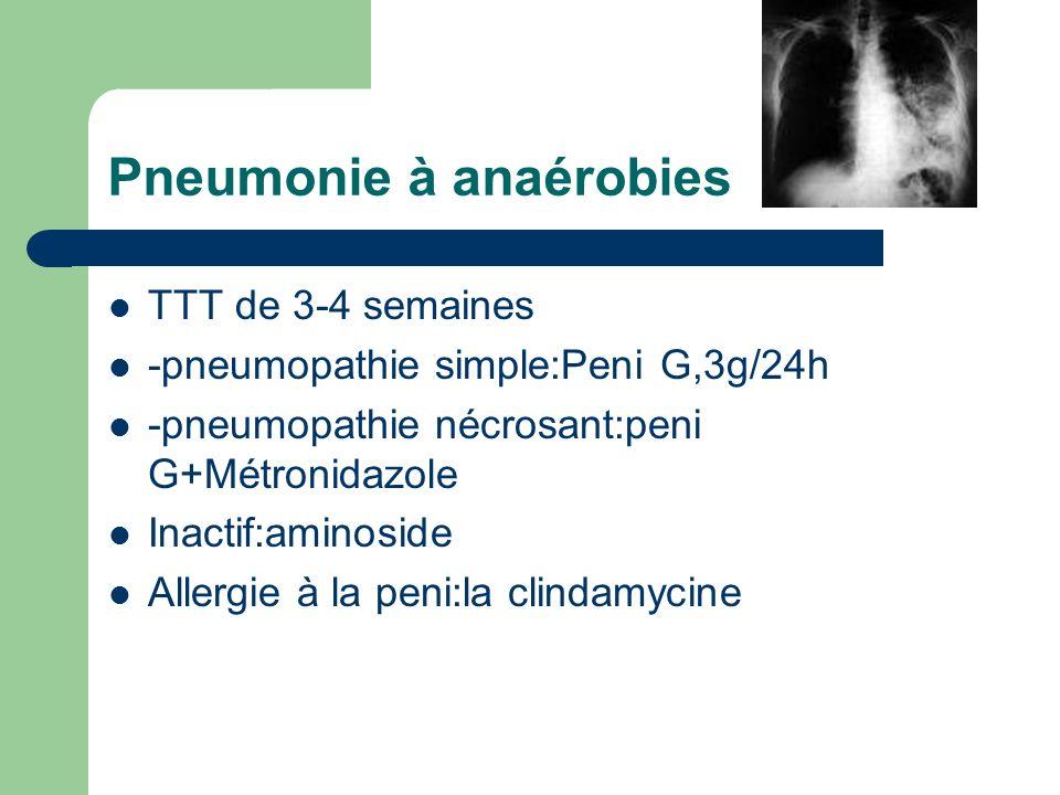 Pneumonie à anaérobies