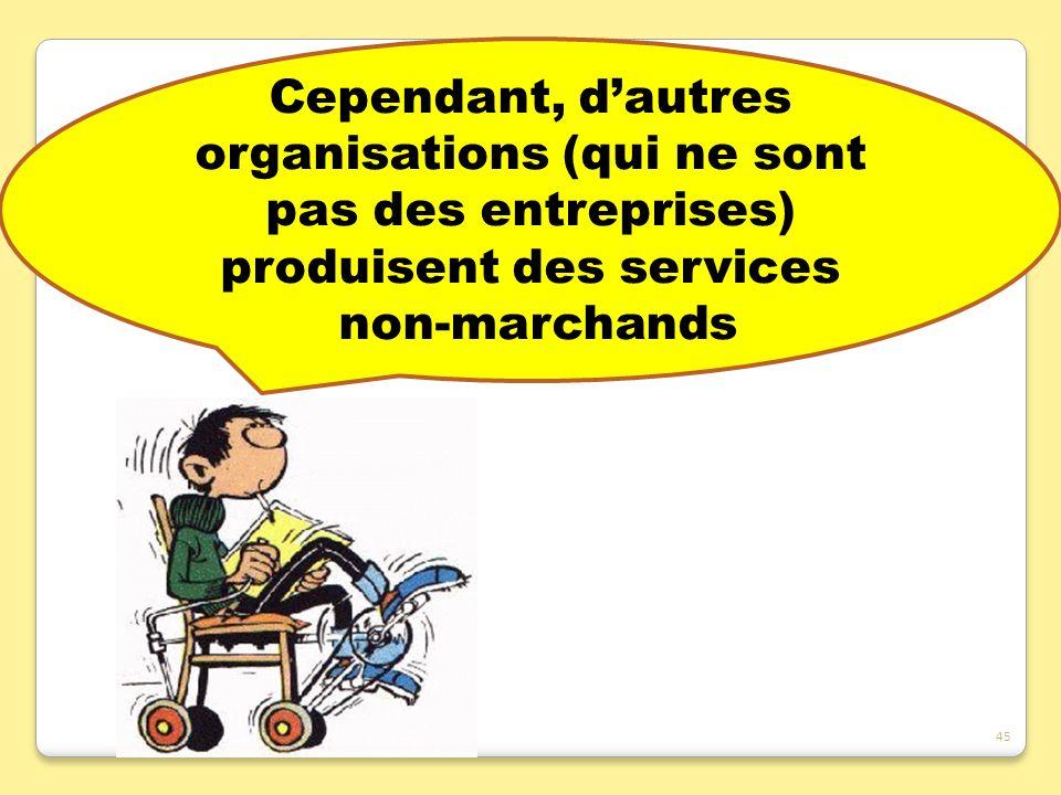 Cependant, d'autres organisations (qui ne sont pas des entreprises) produisent des services