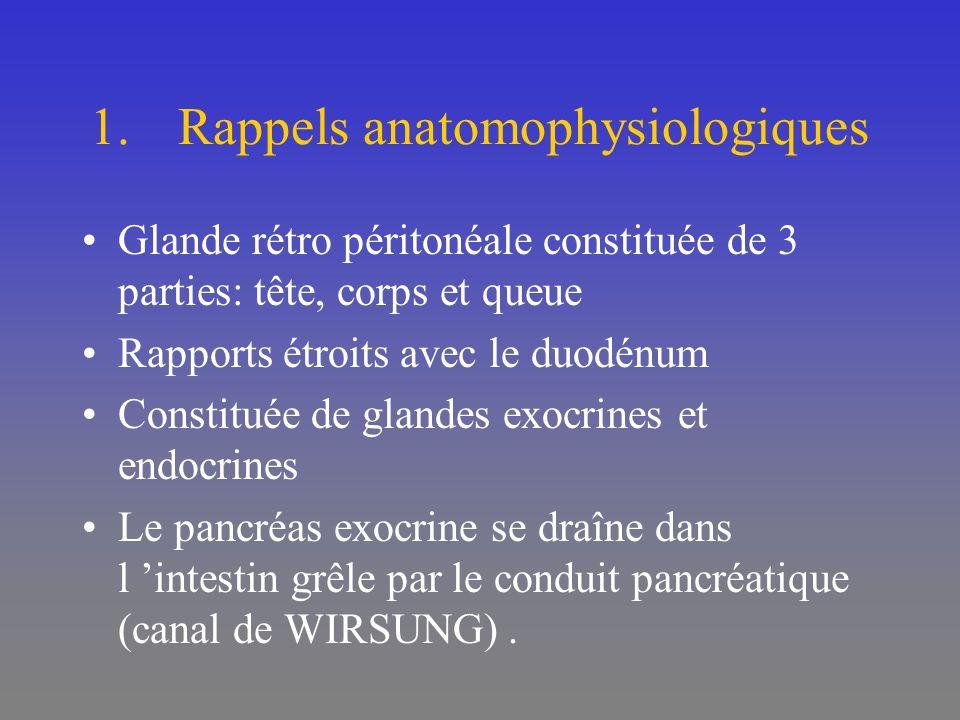 Rappels anatomophysiologiques