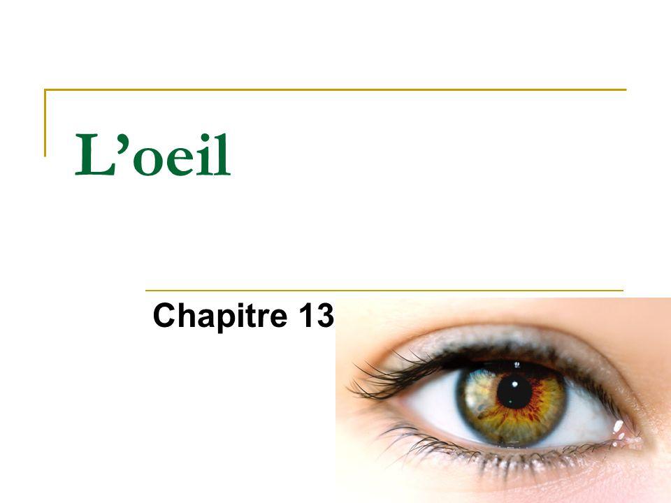 L'oeil Chapitre 13