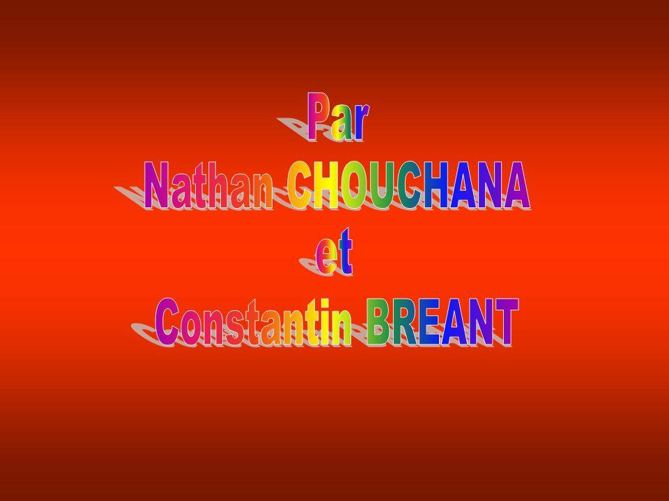 Par Nathan CHOUCHANA et Constantin BREANT