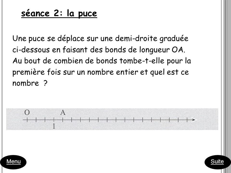 séance 2: la puce Une puce se déplace sur une demi-droite graduée