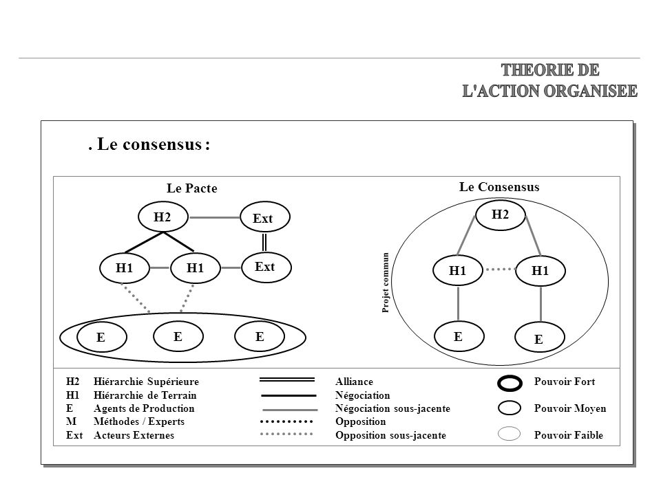 THEORIE DE L ACTION ORGANISEE