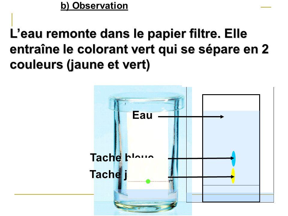 b) Observation L'eau remonte dans le papier filtre. Elle entraîne le colorant vert qui se sépare en 2 couleurs (jaune et vert)
