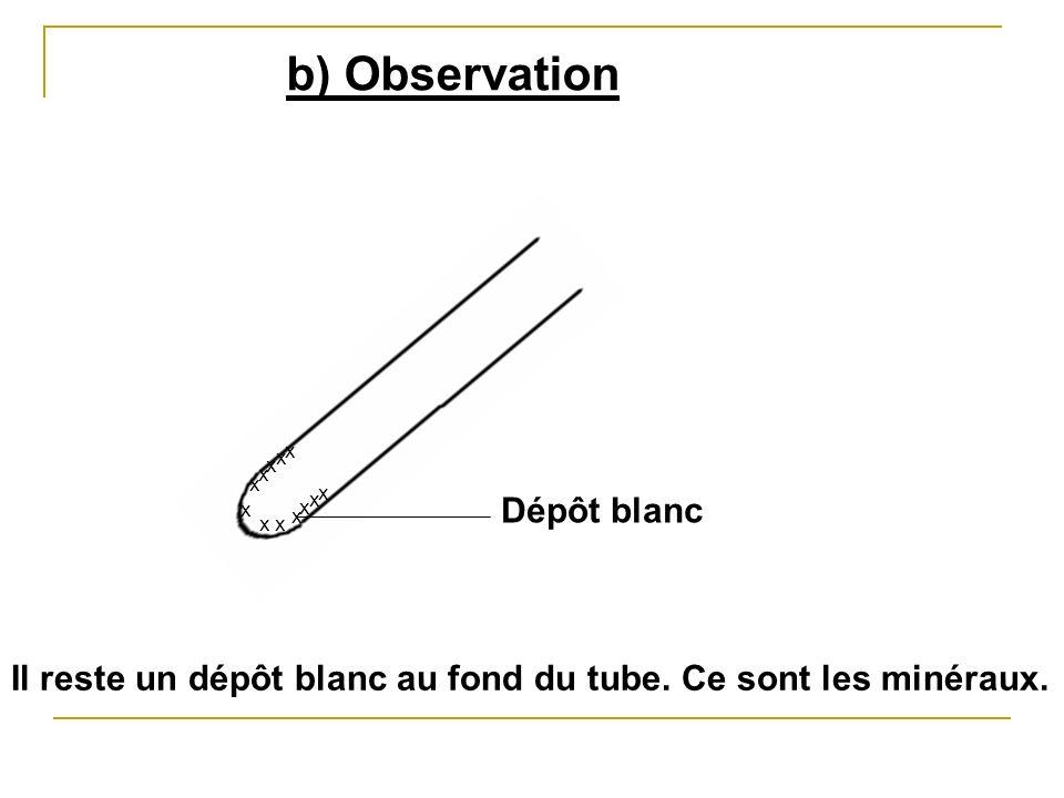 b) Observation Dépôt blanc