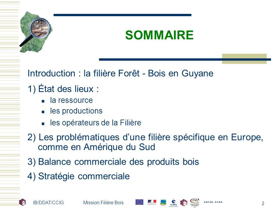 SOMMAIRE Introduction : la filière Forêt - Bois en Guyane