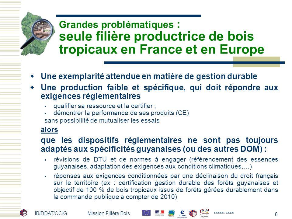 Grandes problématiques : seule filière productrice de bois tropicaux en France et en Europe