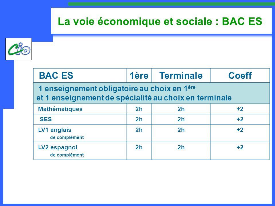 La voie économique et sociale : BAC ES