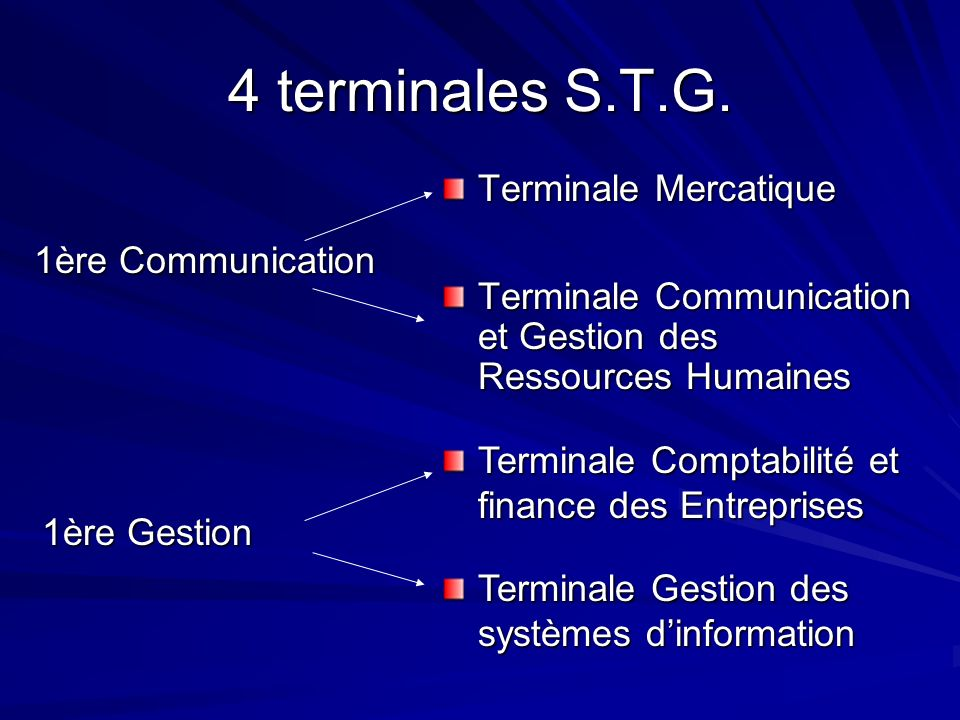 4 terminales S.T.G. Terminale Mercatique 1ère Communication