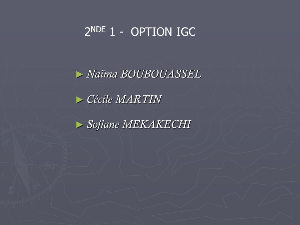2NDE 1 - OPTION IGC Naïma BOUBOUASSEL Cécile MARTIN Sofiane MEKAKECHI