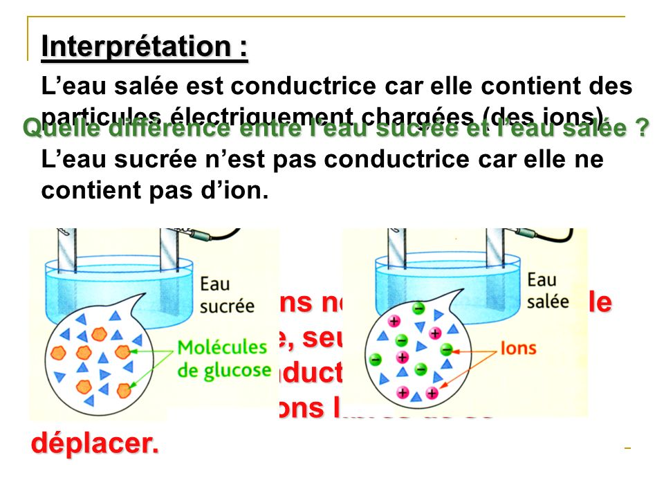 Interprétation : Conclusion :