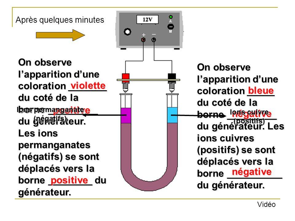 Ions permanganate (négatifs) Ions cuivre (positifs)