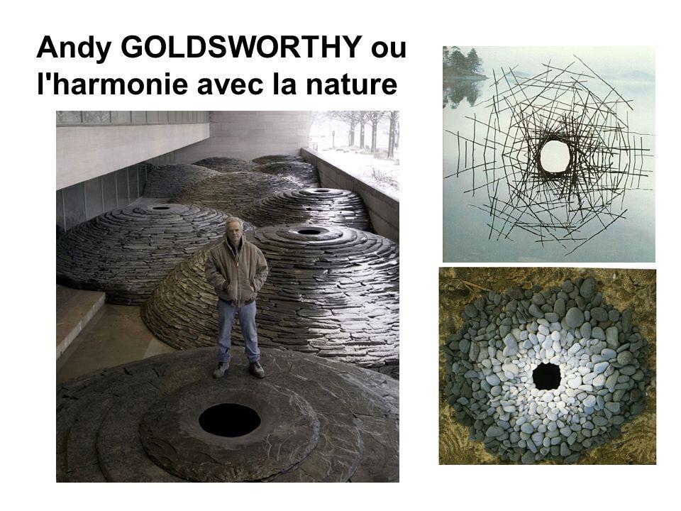 Andy GOLDSWORTHY ou l harmonie avec la nature
