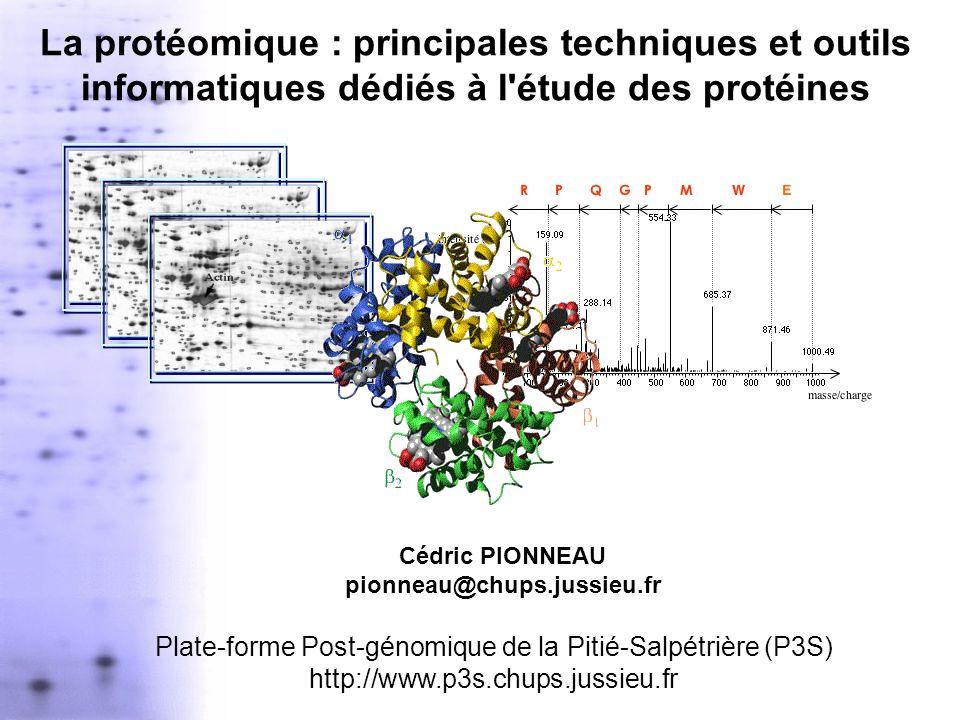 Cédric PIONNEAU pionneau@chups.jussieu.fr
