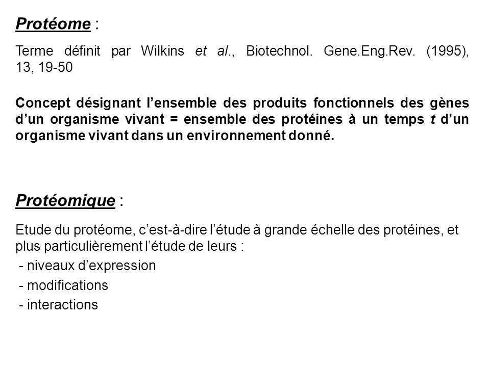 Protéome : Protéomique :