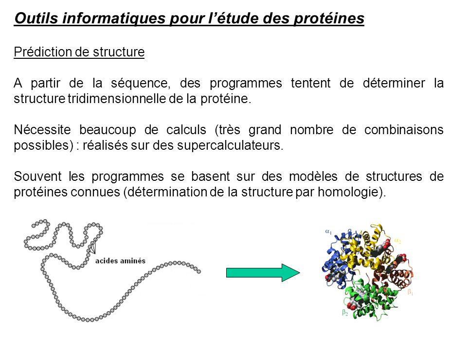 Outils informatiques pour l'étude des protéines