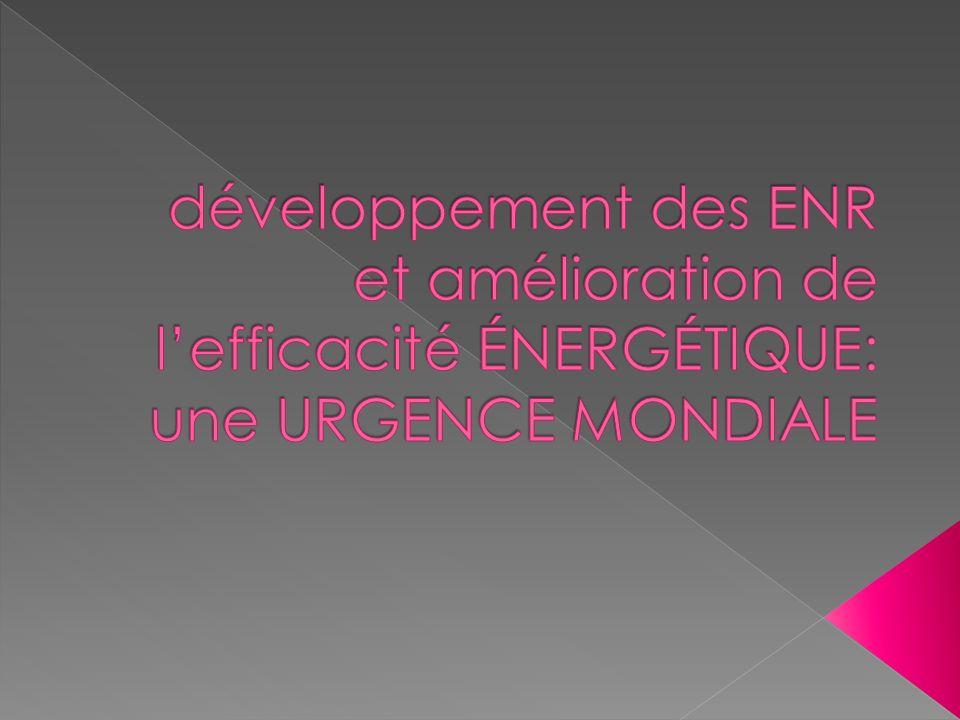 développement des ENR et amélioration de l'efficacité éneRGéTIQUE: une URGENCE MONDIALE