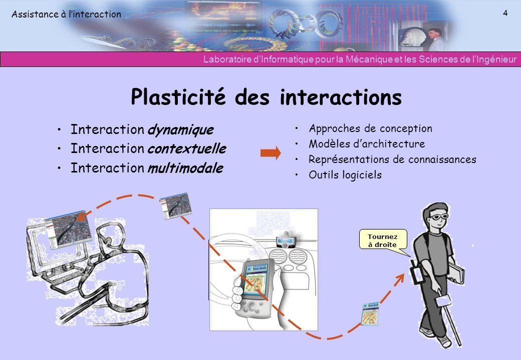 Plasticité des interactions