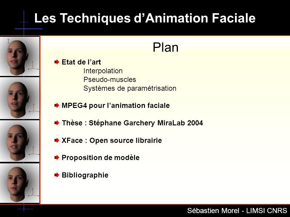 Plan Etat de l'art Interpolation Pseudo-muscles