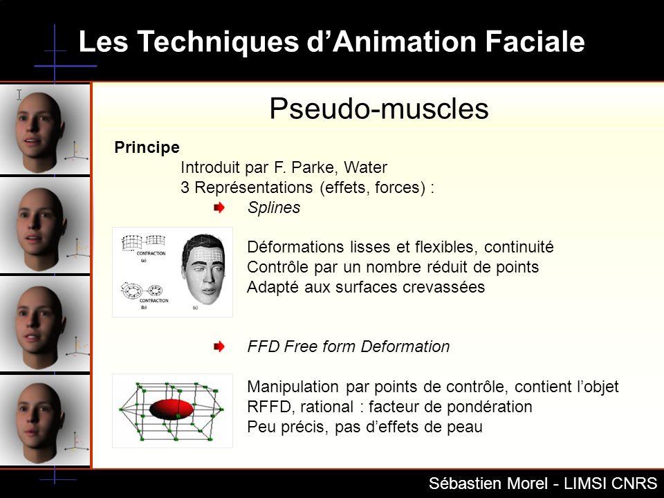 Pseudo-muscles Principe Introduit par F. Parke, Water