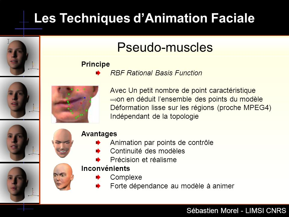 Pseudo-muscles Principe RBF Rational Basis Function