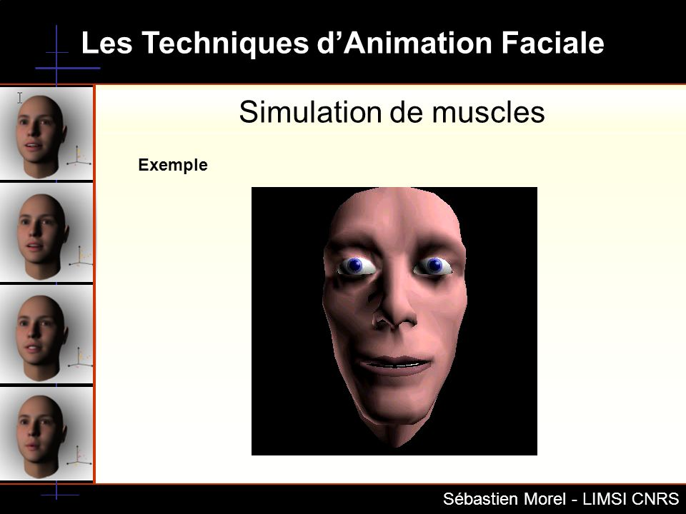 Simulation de muscles Exemple