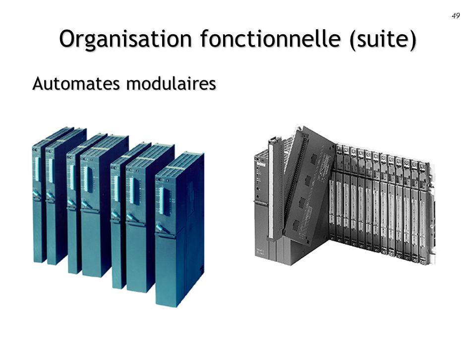 Organisation fonctionnelle (suite)