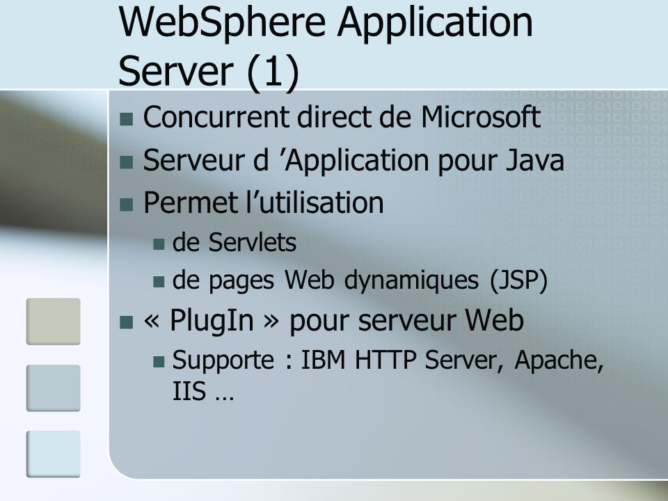 WebSphere Application Server (1)