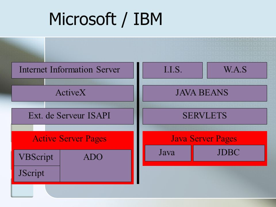 Microsoft / IBM Internet Information Server I.I.S. W.A.S ActiveX