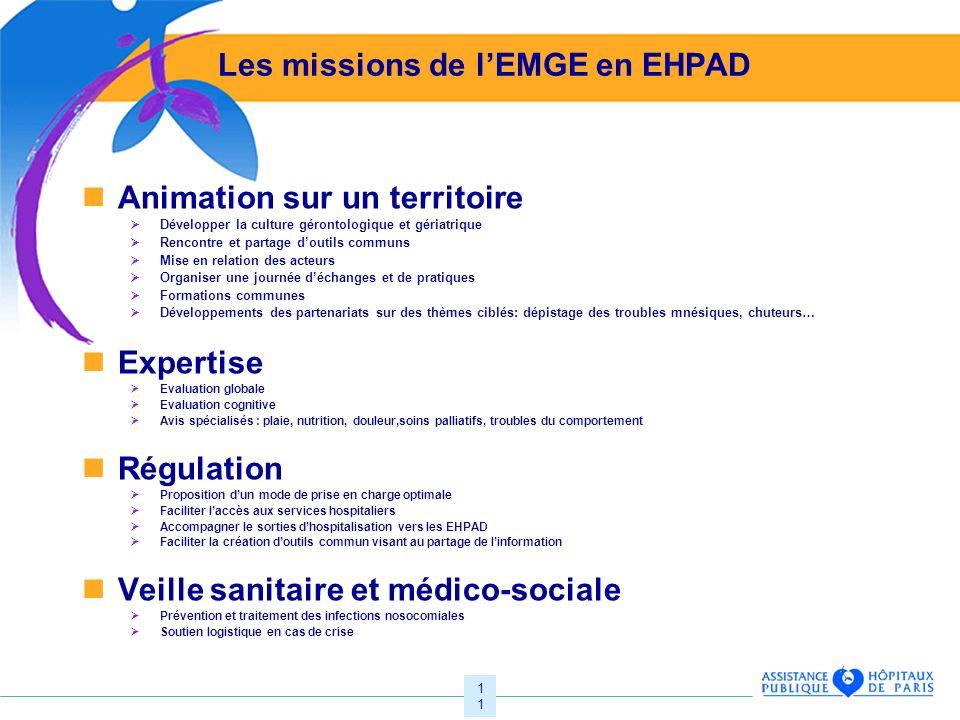 Les missions de l'EMGE en EHPAD