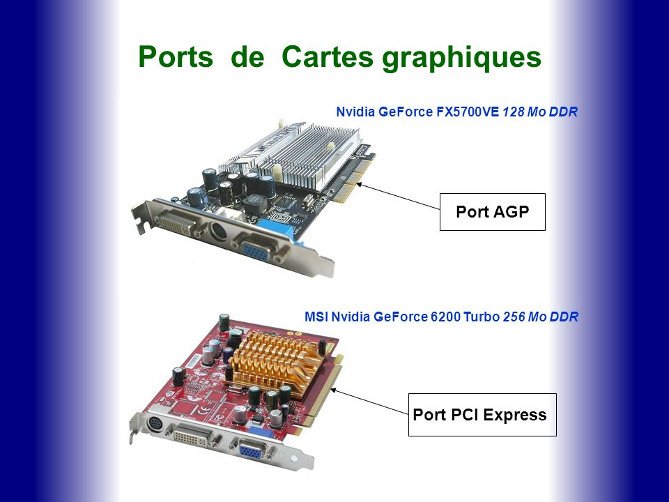 Ports de Cartes graphiques MSI Nvidia GeForce 6200 Turbo 256 Mo DDR