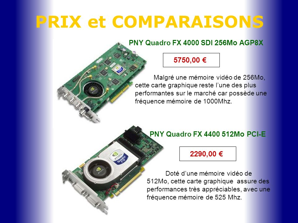 PNY Quadro FX 4000 SDI 256Mo AGP8X