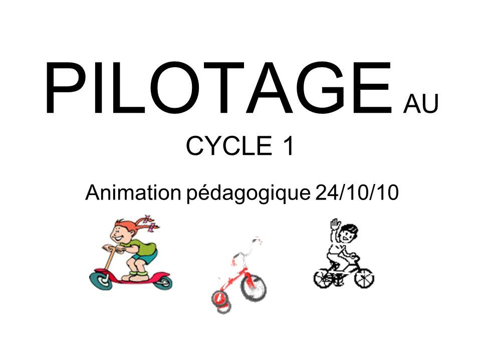 Animation pédagogique 24/10/10
