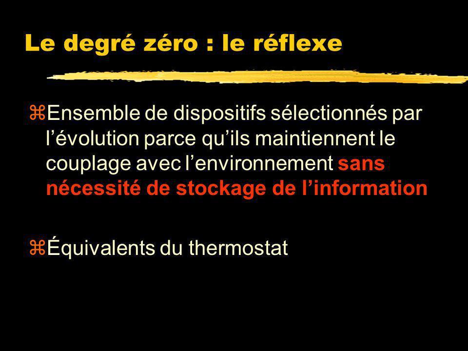 Le degré zéro : le réflexe