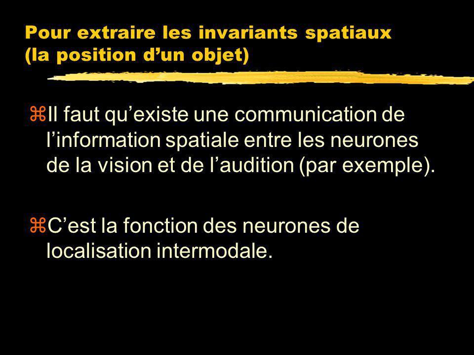 Pour extraire les invariants spatiaux (la position d'un objet)