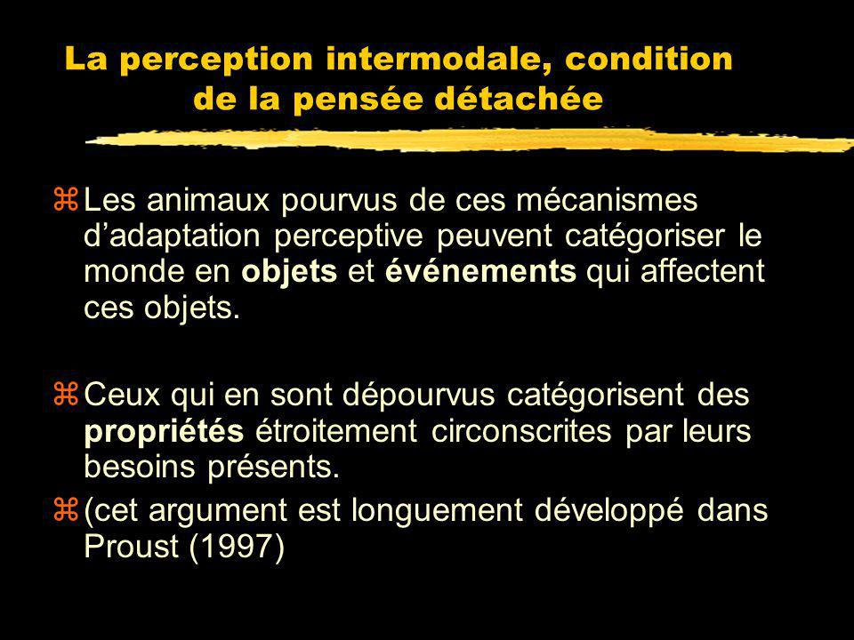 La perception intermodale, condition de la pensée détachée
