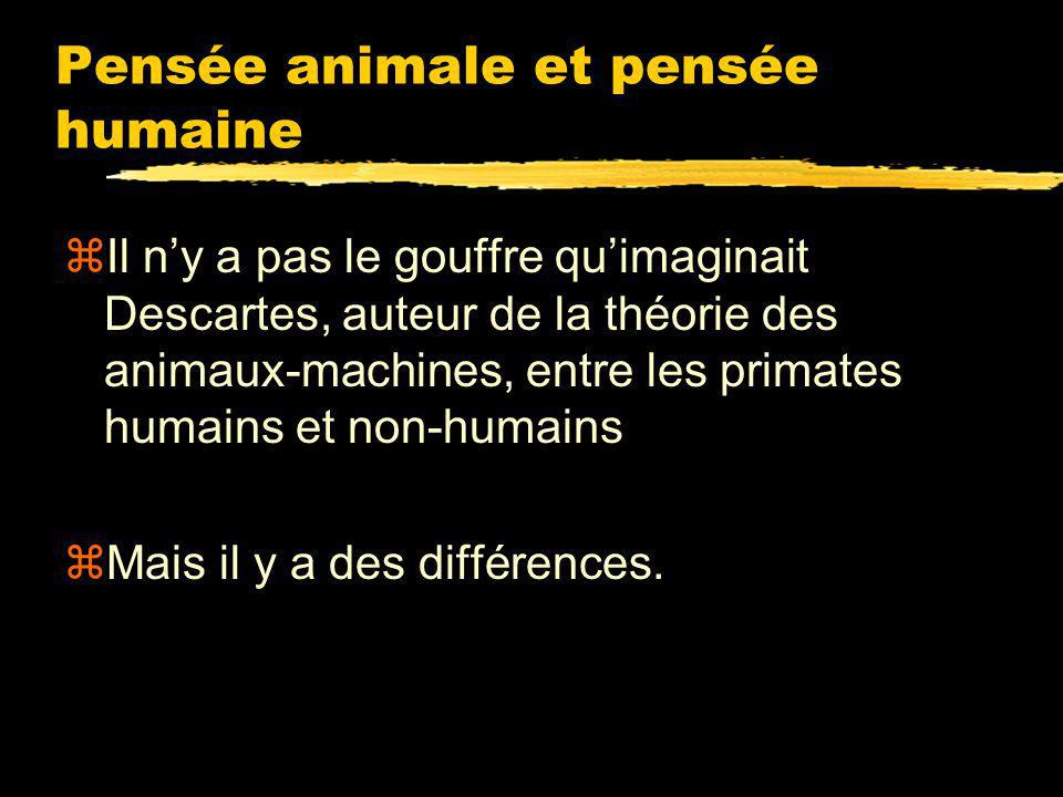 Pensée animale et pensée humaine