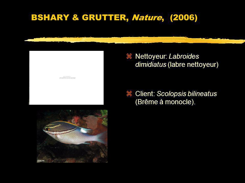 BSHARY & GRUTTER, Nature, (2006)