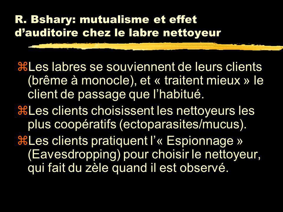 R. Bshary: mutualisme et effet d'auditoire chez le labre nettoyeur