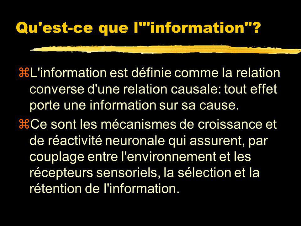 Qu est-ce que l information