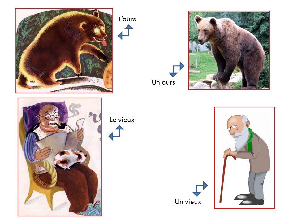 L'ours Un ours Le vieux Un vieux