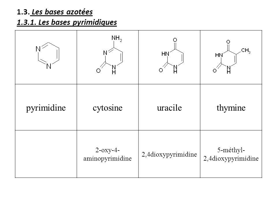 1.3. Les bases azotées 1.3.1. Les bases pyrimidiques