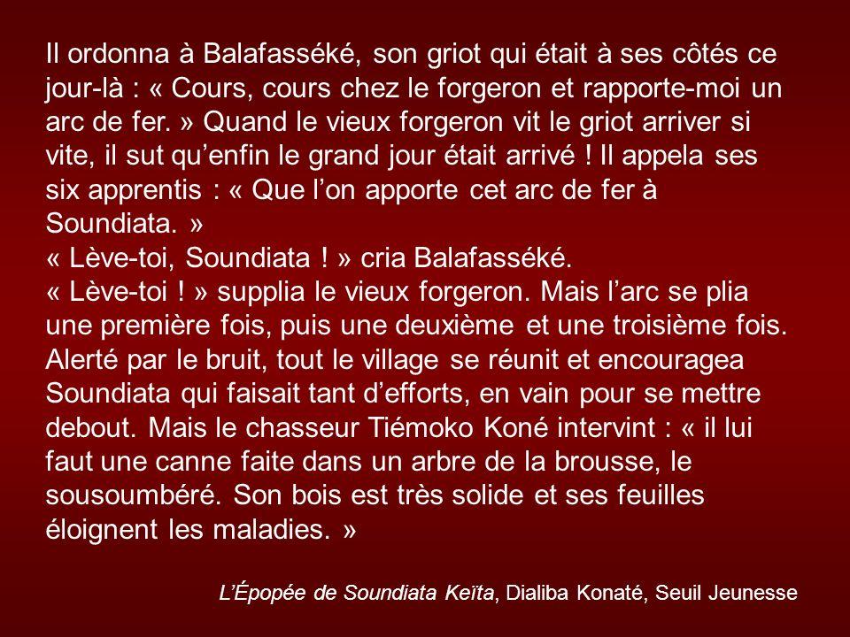 « Lève-toi, Soundiata ! » cria Balafasséké.