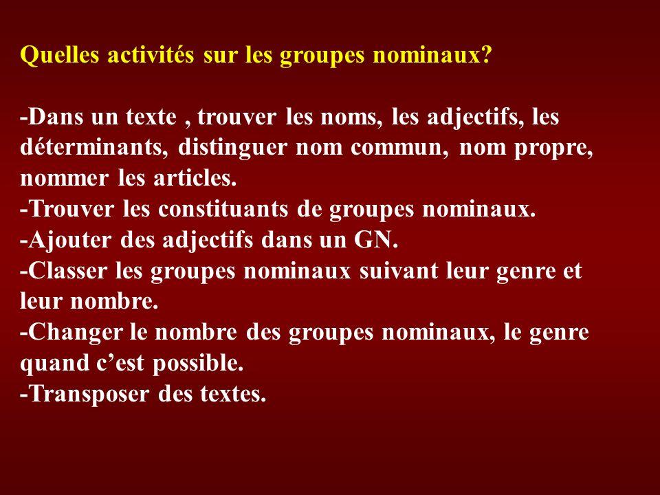 Quelles activités sur les groupes nominaux