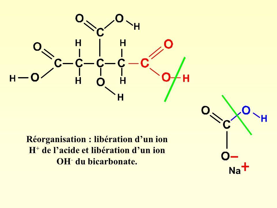 Réorganisation : libération d'un ion H+ de l'acide et libération d'un ion OH- du bicarbonate.